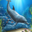 The World Of The Dolphin — Stock Photo #25142461