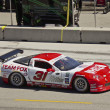 Stock Photo: Corvette at Grand AM Rolex Races on MazdLagunSecRaceway