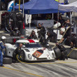 Stock Photo: Ford Can-Am at pit stop at Grand AM Rolex Races on MazdLagunSecRaceway