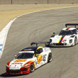 Постер, плакат: Ford Can Am and Mazda RX8 at Grand AM Rolex Races on Mazda Laguna Seca Raceway