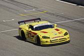 Dodge Viper GTS at Grand AM Rolex Races on Mazda Laguna Seca Raceway — Stock Photo