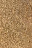 Textura del lether. — Stockfoto
