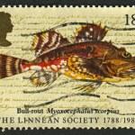 Postage stamp. — Stock Photo #26023433