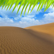 Desert sand dunes in Maspalomas Gran Canaria — Stock Photo