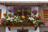 Gran Canaria Teror flower pot balcony — Stock Photo