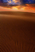 Desert dunes sand in Maspalomas Gran Canaria — Stock Photo