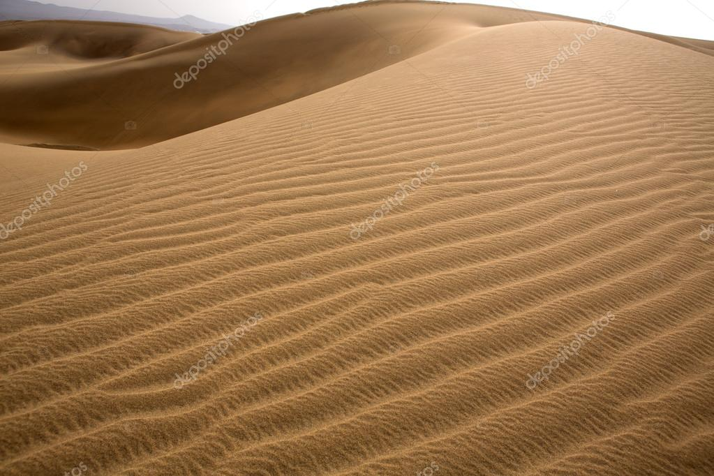 Desert dunes sand in Maspalomas Oasis Gran Canaria at Canary islands — Stock Photo #12648618