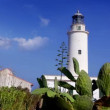 Formentera La Mola lighthouse in the blue Mediterranean sea  — Stock Video