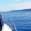 Boating in blue sea on sport fisher boat side view from bow in mediterranean — Stock Video