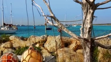 Formentera La Sabina with dry tree hanging fishermen nets and buoys and sailboats — Stock Video