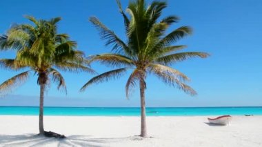 Caribbean Tulum white sand beach with two palm trees and beached boat like paradise near Cancun — Stock Video