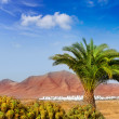 Ajaches mountain in Lanzarote Punta Papagayo - Stock Photo