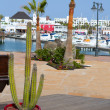 Lanzarote Marina Rubicon Playa Blanca — Stock Photo