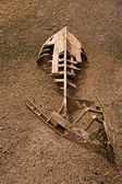 Boat ship skeleton half buried in sand — Stock Photo