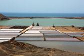 Lanzarote saltworks salinas de Janubio — Stock Photo