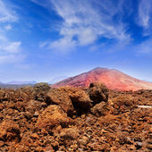 Lanzarote Montana Bermeja red mountain — Stock Photo