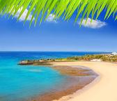 Spiaggia di arrecife lanzarote playa del reducto — Foto Stock