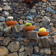 Lanzarote Guatiza cactus garden pots in a row — Stock Photo