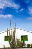 Lanzarote Teguise white and cactus village — Stock Photo