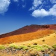 Canary islands in Tenerife Teide National Park - Foto de Stock