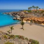 Beach Playa Paraiso costa Adeje in Tenerife — Stock Photo #12825261
