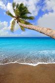 Canary Islands brown sand beach tropical aqua — Stock Photo