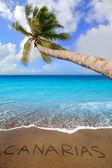 Brun beach sand med skrivna ordet canarias — Stockfoto