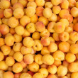 Apricot pattern texture on a market display - Stock Photo