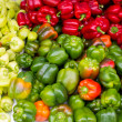 Colorful peppers green yellow red — Stock Photo