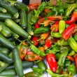 Colorful green and red peppers and zucchini — Stock Photo