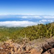 La Palma Caldera de Taburiente sea of clouds - Stock Photo