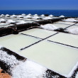 Royalty-Free Stock Photo: La Palma Salinas de fuencaliente saltworks