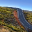 Green mountain winding road dangerous curves — Stockfoto