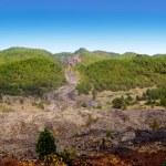 Barranco de las Angustias lava river La Palma — Stock Photo #13305722