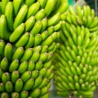 Canarian Banana Platano in La Palma - Stock Photo