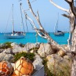Aqua mediterranean in formentera with sailboats — ストック写真