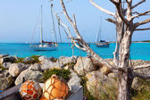 Aqua mediterranean in formentera with sailboats — Stock Photo