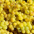 Muscat moscatel grape yellow green fruit — Stock Photo