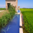 Rice fields in Valencia with irrigation and warehouse — Stock Photo