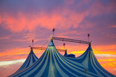 Circus tent in a dramatic sunset sky colorful — Stock Photo