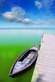 Albufera lake in Valencia El Saler under blue sky — Stock Photo