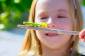 Naturalist biologist kid girl looking praying mantis — Stock Photo
