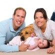 Baby mother and father happy family and dog - Stok fotoğraf