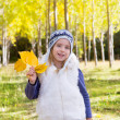 Child girl in autumn poplar forest yellow fall leaves in hand — Stock Photo #19533329