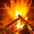 Burning firewood in chimney with pine cones - Stock Photo