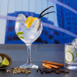 Stock Photo: Gin tonic cocktail with spices in urbcity buildings
