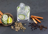 Gin tonic cocktail with lima cucumber vanilla cloves cardamom — Stock Photo