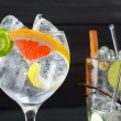 Gin tonic varied cocktails with limlemon and grapefruit — Stock Photo #25350567
