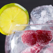 Gin tonic cocktail with raspberry and ice macro closeup — Stock Photo