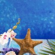 Starfish seashells with hyacinth flower and white orchid - Stock Photo